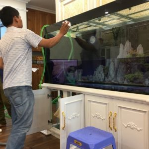 Bể cá nhà anh Hoàn chung cư Thăng Long – Thiên đường Bảo Sơn 1