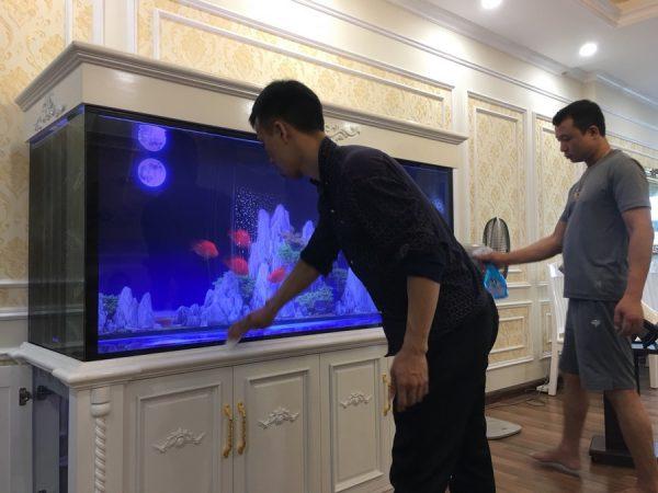 Bể cá nhà anh Hoàn chung cư Thăng Long – Thiên đường Bảo Sơn 4