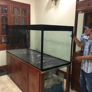 Bể cá rồng nhà anh Hưng ngõ 678 Đường Láng 1