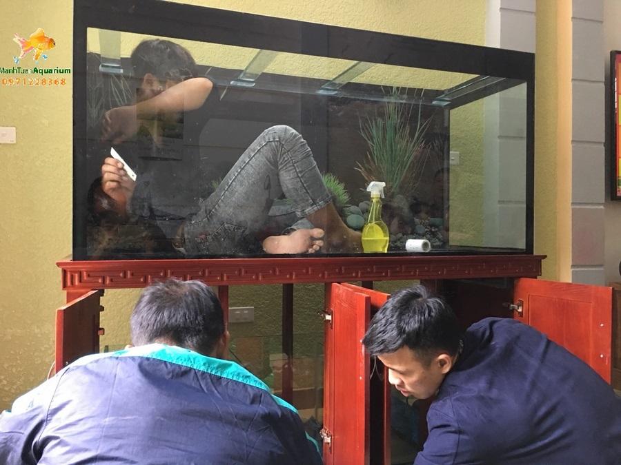 Bể cá rồng cao cấp nhà anh Khánh 2