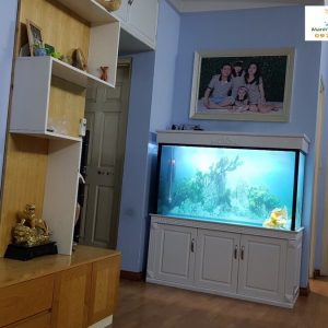 Bể cá rồng nhà anh Linh chung cư CT2A Xa La Hà Đông 1