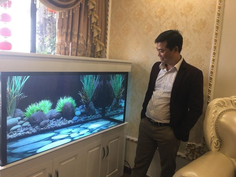Bể cá rồng nhà anh Vinh 2