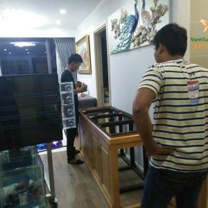 Bể cá rồng nhà anh Trung tại chung cư Nguyễn Tuân 3