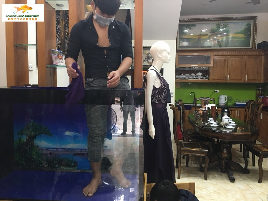 Bể cá rồng nhà anh Tuấn – Trần Điền Lê Trọng Tấn 3