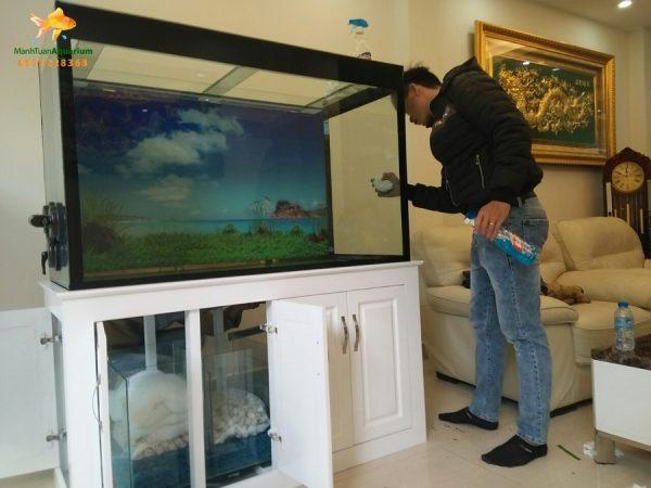 Bể cá rồng chị Hương nhà bán đảo Linh Đàm 1