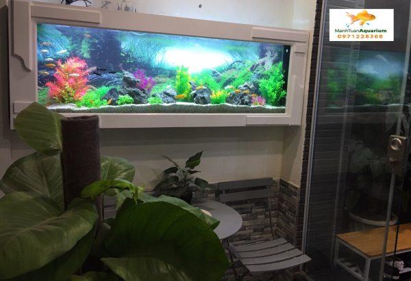 Bể cá treo tường ốp gỗ nhà chị Minh 1