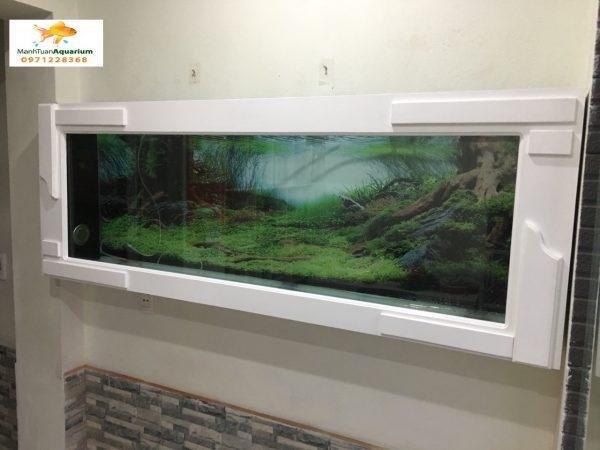 Bể cá treo tường ốp gỗ nhà chị Minh 2