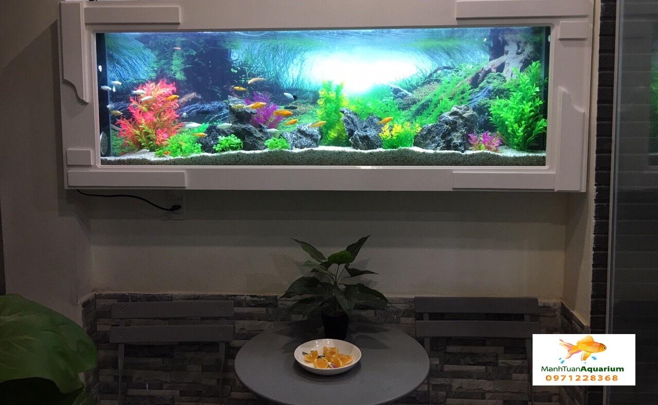 Bể cá treo tường ốp gỗ nhà chị Minh 3
