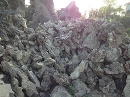 các loại đá bể thủy sinh  1 Top 7 loại đá dùng trang trí bể thủy sinh