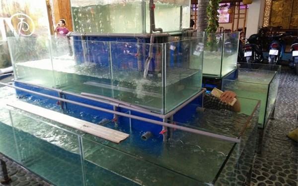 bể hải sản 1