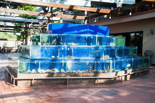 bể hải sản 2