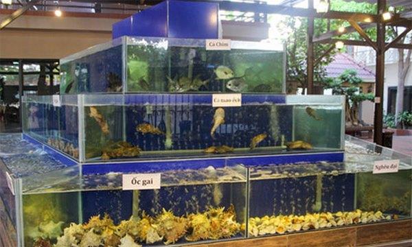 bể hải sản nhà hàng 2