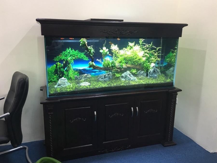 Bể cá thủy sinh có chân và nắp từ gỗ sồi 1