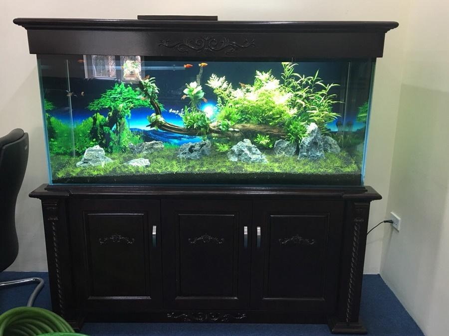 Bể cá thủy sinh có chân và nắp từ gỗ sồi 2