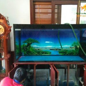 Bể cá rồng nhà chú Lãm tại Biệt thự Mỹ Đình 3