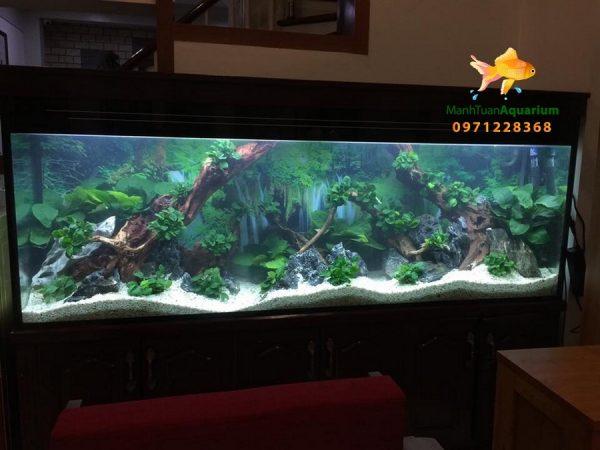 Bể cá thủy sinh cao cấp nhà anh Cường 1