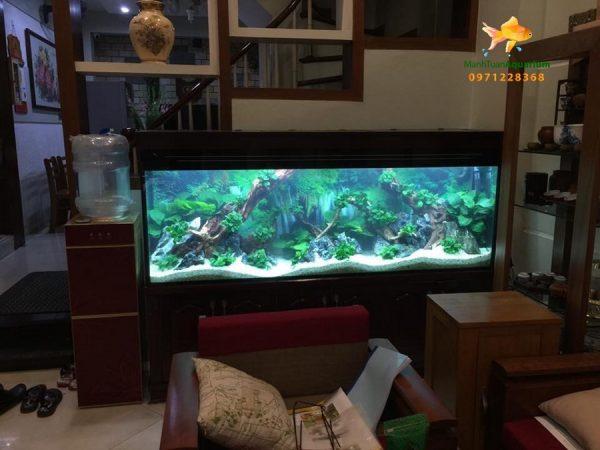 Bể cá thủy sinh cao cấp nhà anh Cường 3