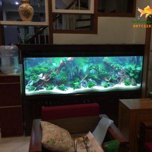 Bể thủy sinh – Anh Cường Làng Việt Kiều Châu Âu Tây Mỗ 1