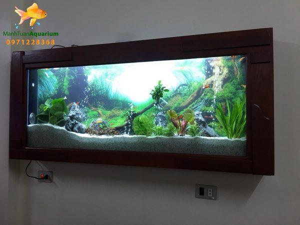 Bể thủy sinh cây thật nhà Anh Hải - Việt Trì 2