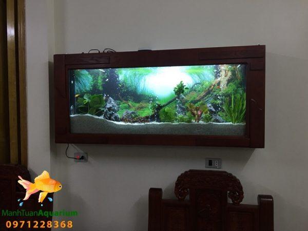 Bể thủy sinh cây thật nhà Anh Hải - Việt Trì 3