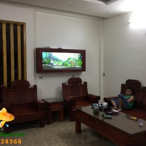 Bể thủy sinh cây thật nhà Anh Hải - Việt Trì 4
