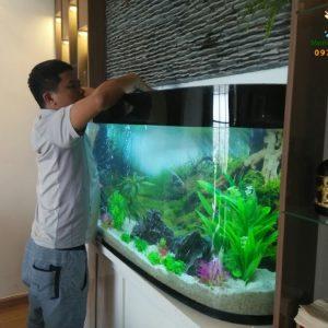 Giới thiệu bể thủy sinh của anh Hùng – nhà Mỹ Đình 3 Cute Shop