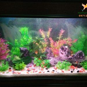 Bể thủy sinh cây nhựa – nhà chị Liên giám đốc công ty Dược 3