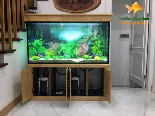 Bể thủy sinh cây nhựa – nhà chị Quỳnh biệt thự Vincom Long Biên 3