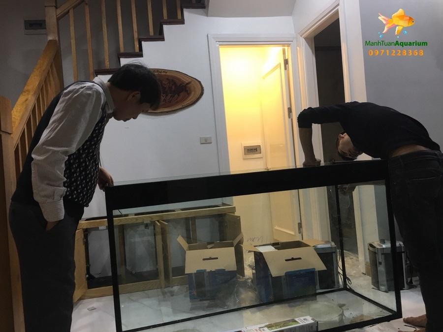 Bể thủy sinh cây nhựa – nhà chị Quỳnh biệt thự Vincom Long Biên 4