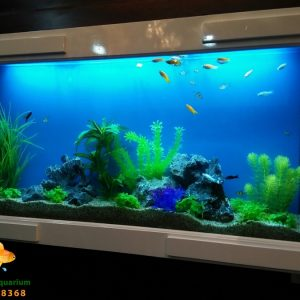 Bể treo tường thủy sinh cây nhựa cho ngôi nhà của bạn 1