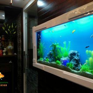 Bể treo tường thủy sinh cây nhựa ch2o ngôi nhà của bạn Cute Shop