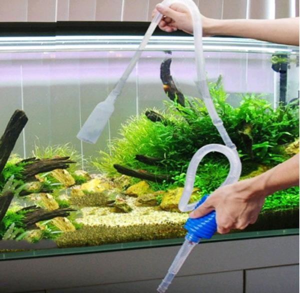 Dịch vụ vệ sinh bể cá Mạnh Tuấn  4