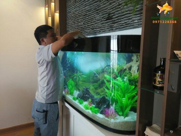 Dịch vụ vệ sinh bể cá Mạnh Tuấn  8 Dịch vụ vệ sinh bể cá cảnh tại nhà Mạnh Tuấn giá rẻ, chuyên nghiệp