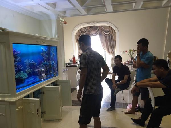 Bể cá rồng – điểm nhấn cho một không gian đẳng cấp 2