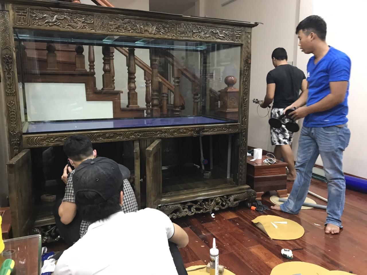 thi công Bể cá rồng nhà anh Tú ở Long Biên Hà Nội