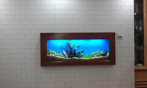 Bể cá treo tường phong thủy