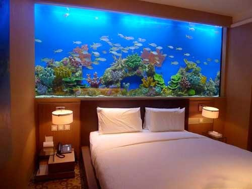 không đặt bể cá trong phòng ngủ