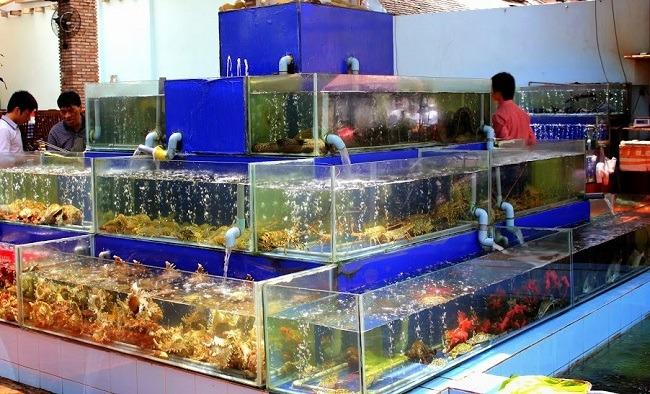 Bể cá hải sản cho nhà hàng
