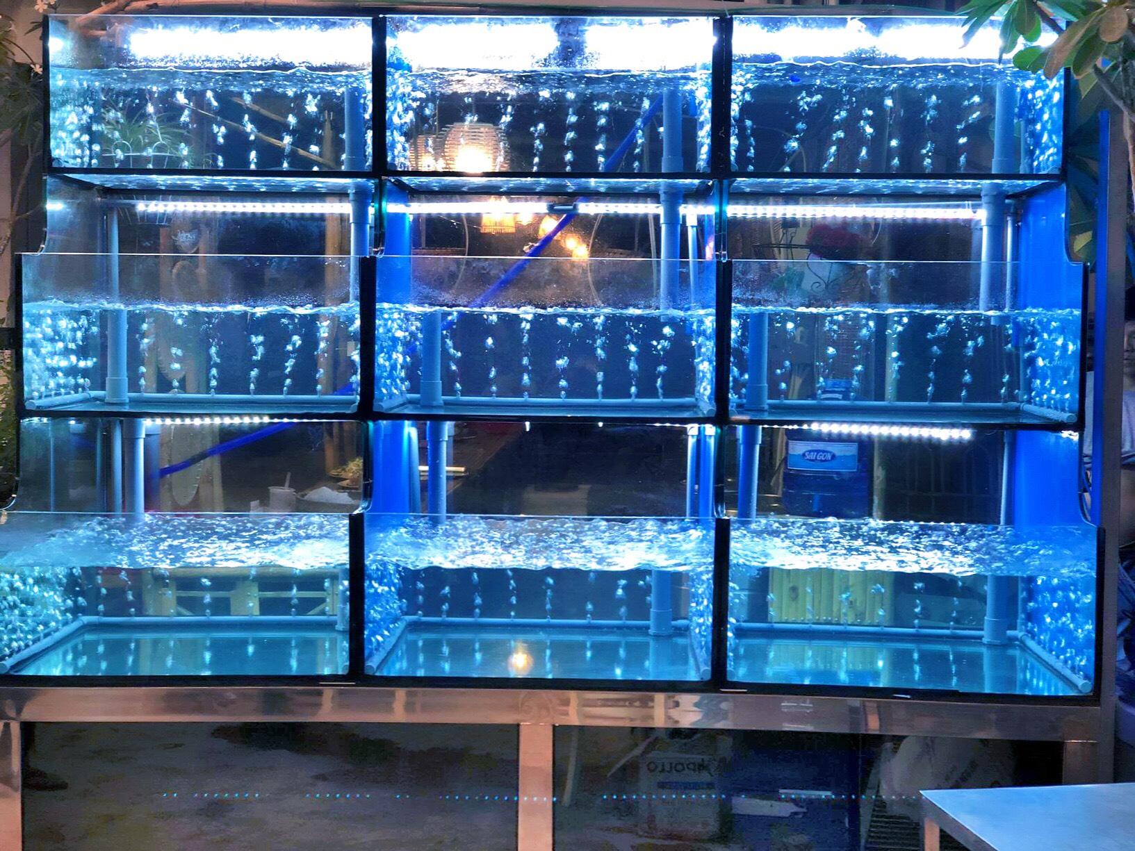 Thiết kế thi công bể cá hải sản nhà hàn