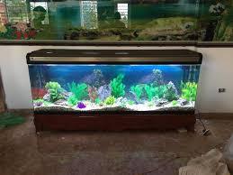 Bể cá cảnh đúc 1m2