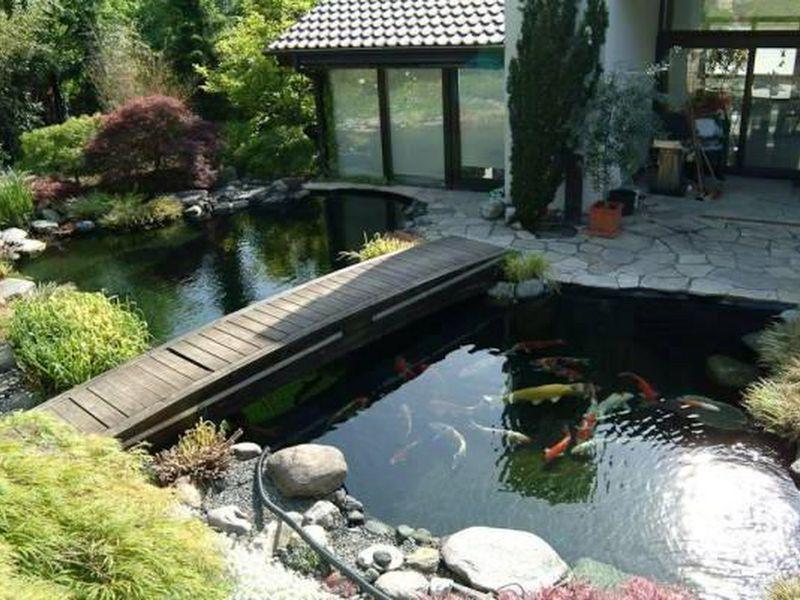 Cách đặt bể cá ngoài sân